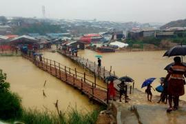 la situazione sul campo dopo le prime intense piogge