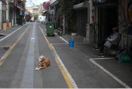 Mercato delle pulci, Jaffa