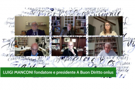 Un'immagine della conferenza online