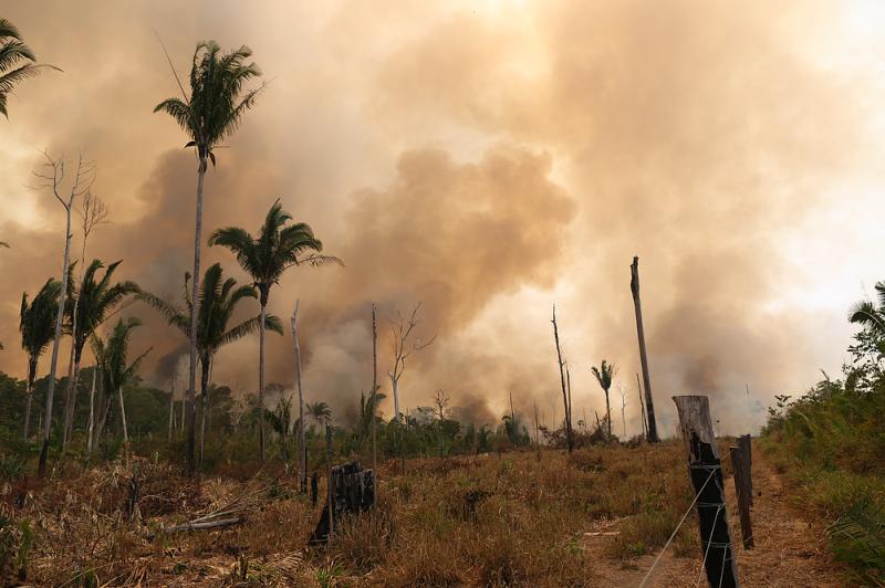 Immagine di un incendio in Amazzonia