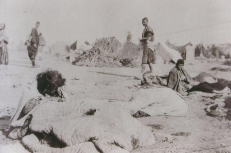 Deportati armeni che vivono nel deserto aperto con il giaciglio come unico rifugio, 195