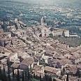 """La """"Società delle mandorle"""" (Assisi)"""
