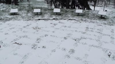 Il Giardino di Milano dopo la neve