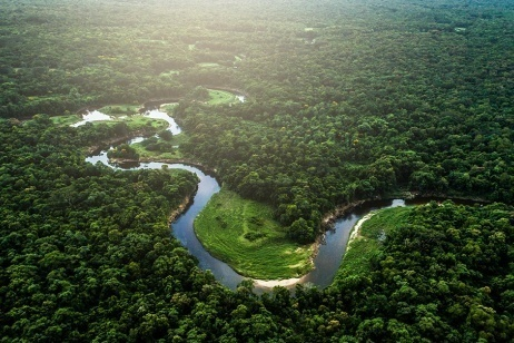Amazzonia, viaggio nelle ferite di una terra depredata