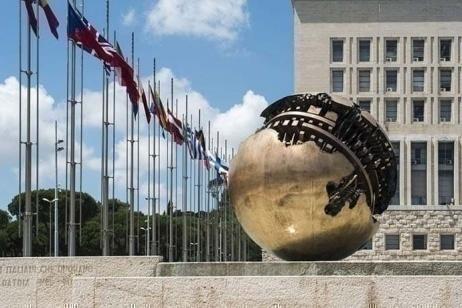Il Viale dei Giusti diplomatici: un segnale morale per il mondo