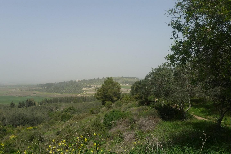 Veduta dalla collina di Neve Shalom - Wahat Al-Salam