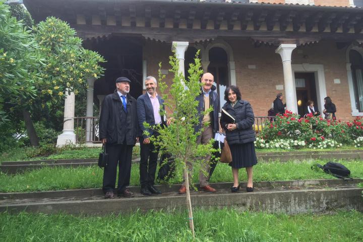 L'albero dedicato ad Armin Wegner a Villa Hériot