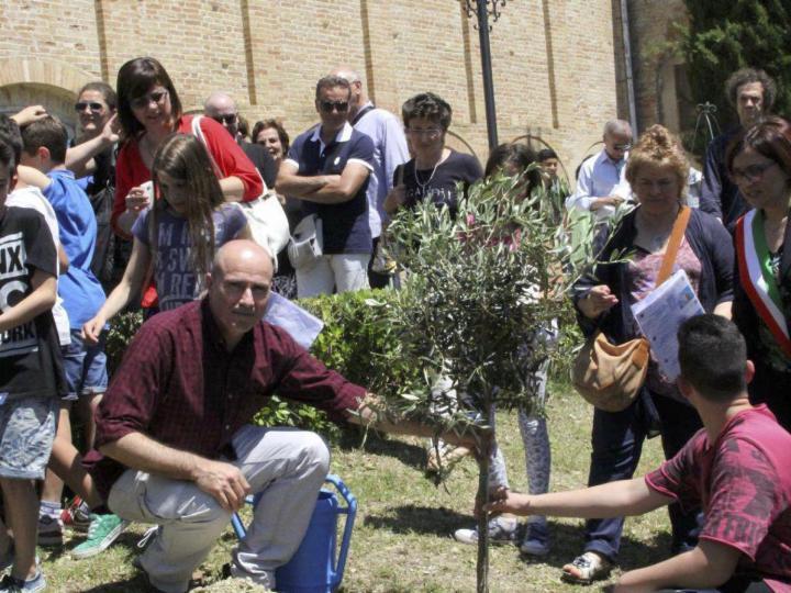 Immagini della cerimonia di piantumazione dell'albero