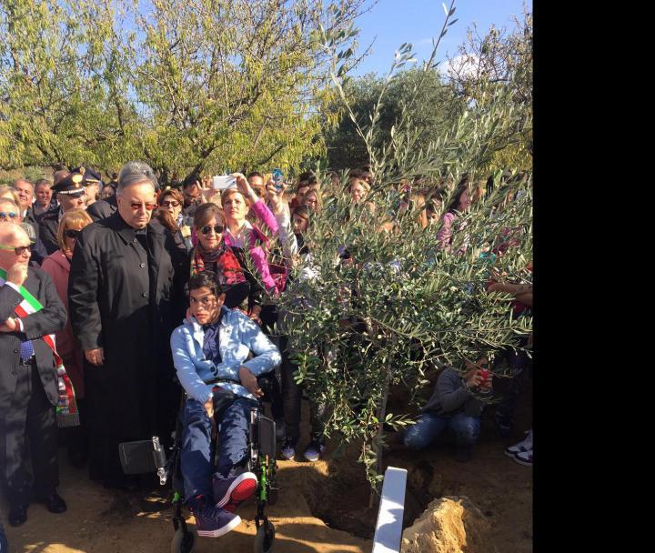 L'albero dedicato a Don Pino Puglisi