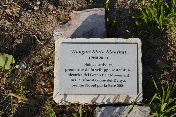 il cippo per Wangari Muta Maathai