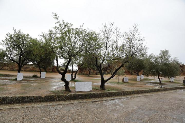 Il Giardino di Agrigento