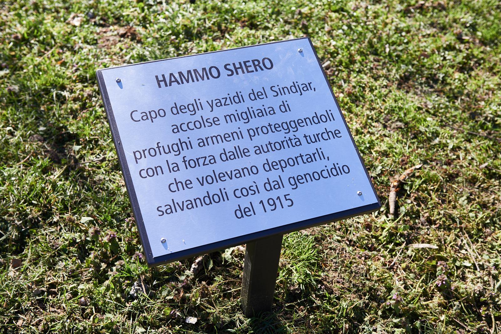 Targa per Hammo Shero