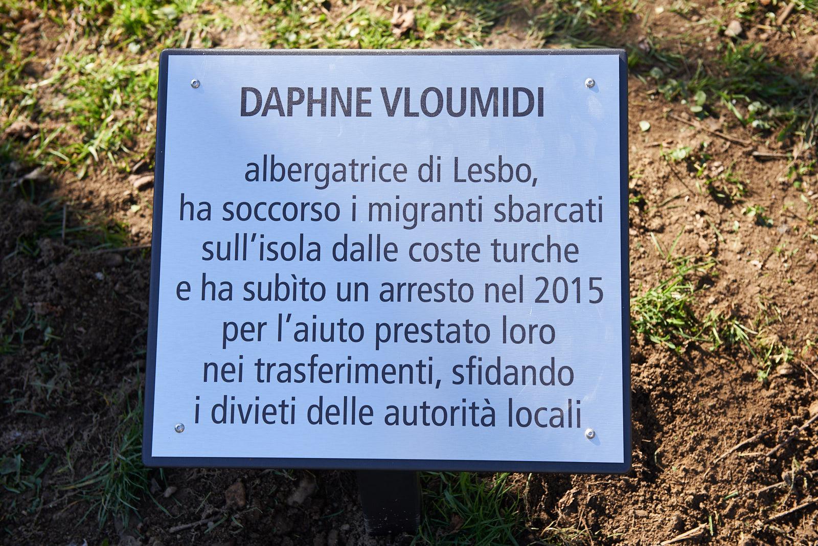 Targa per Daphne Vloumidi