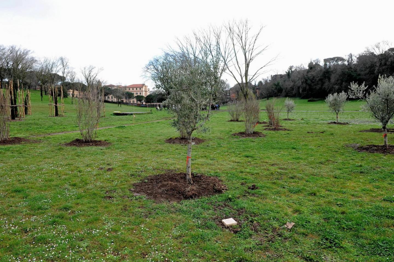 Il Giardino dei Giusti di Roma