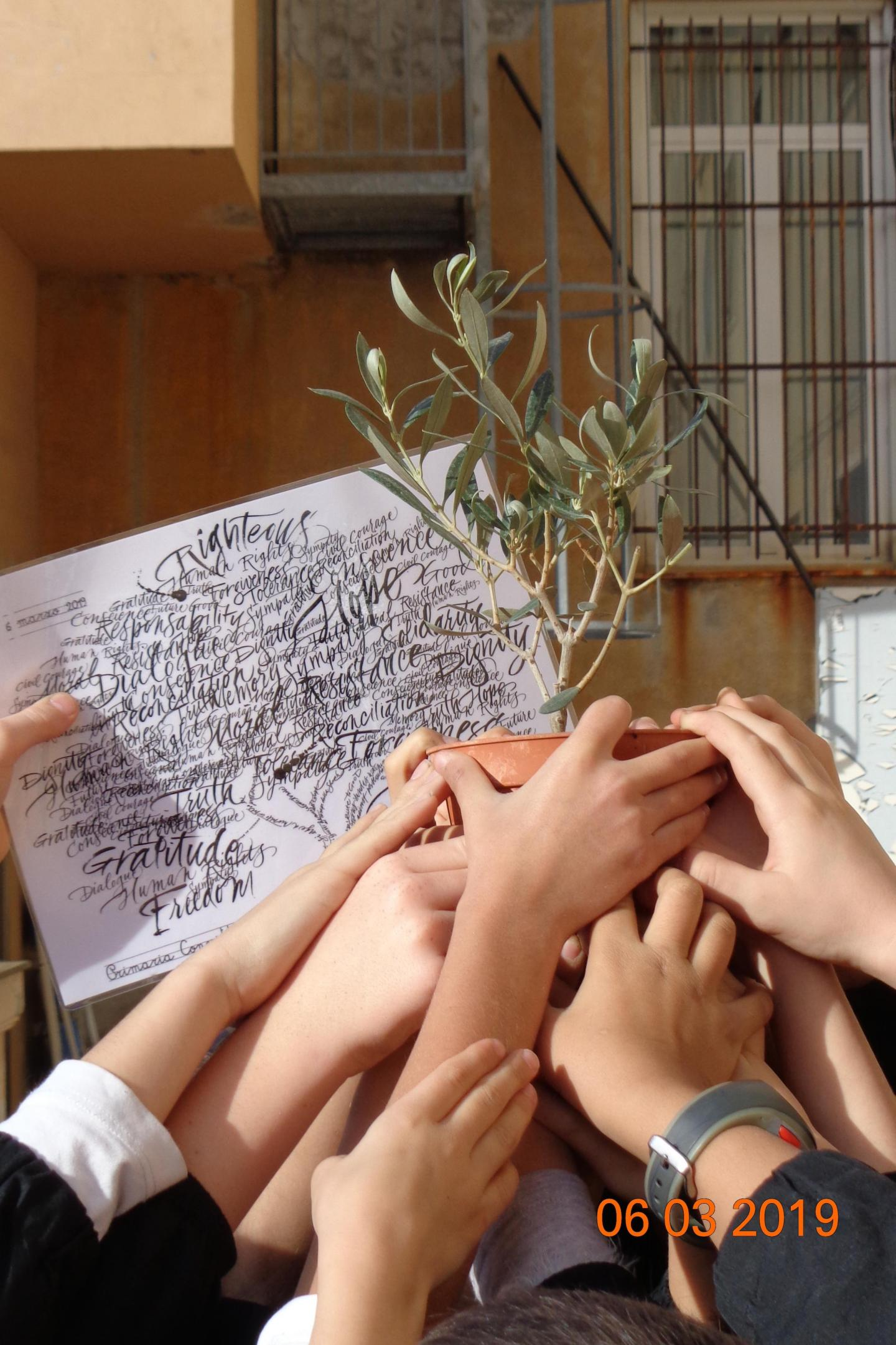 nella scuola primaria del Convitto C. Colombo di Brescia è arrivata una pianta per i Giusti