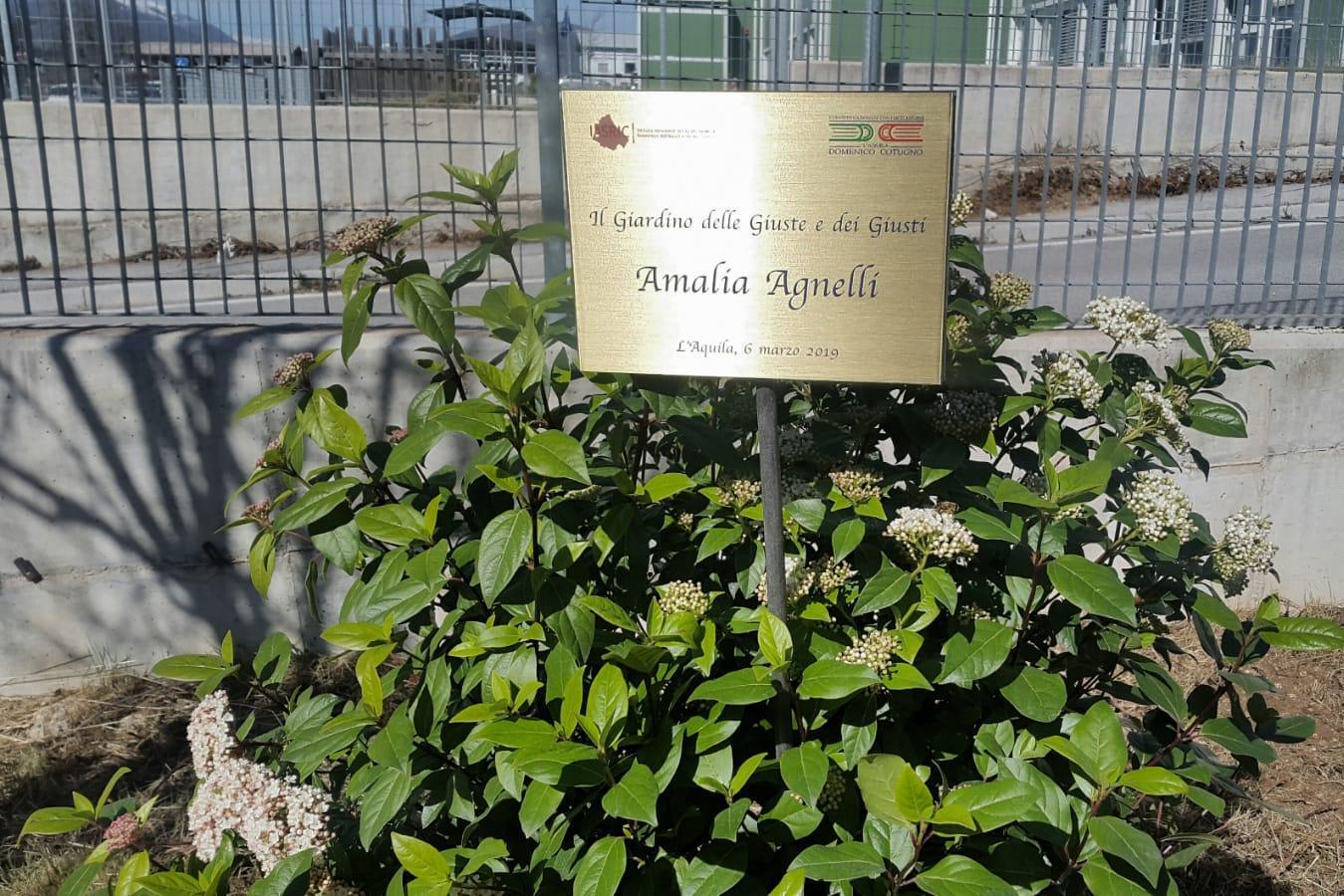 La targa per Amalia Agnelli