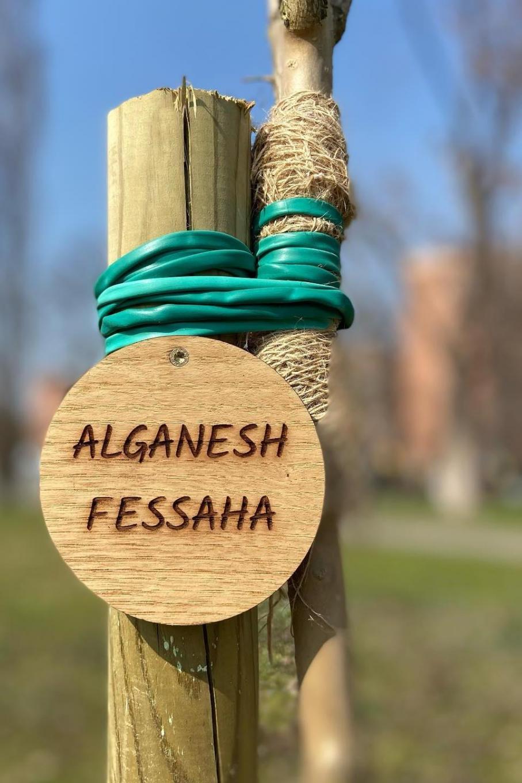 Dal Giardino dei Giusti di Nichelino per Alganesh Fessaha