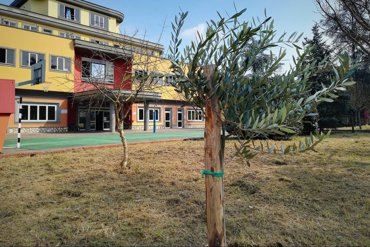 Giornata dei Giusti al Giardino del Liceo Scientifico e Linguistico di Ceccano