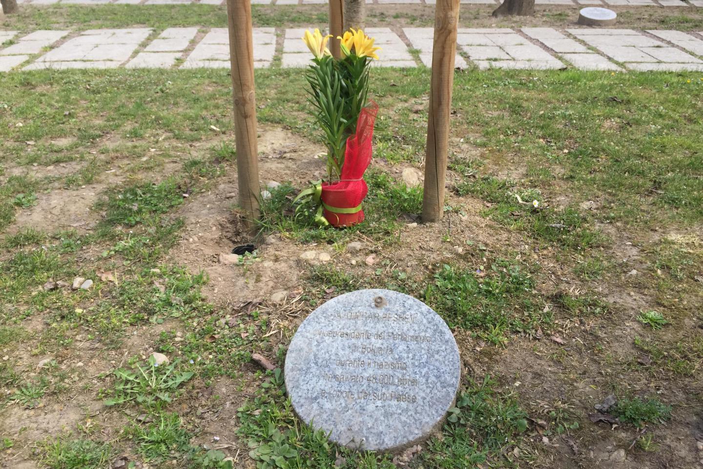 Il cippo e l'albero dedicati a Dimitar Peshev nel Giardino dei Giusti di tutto il mondo di Milano