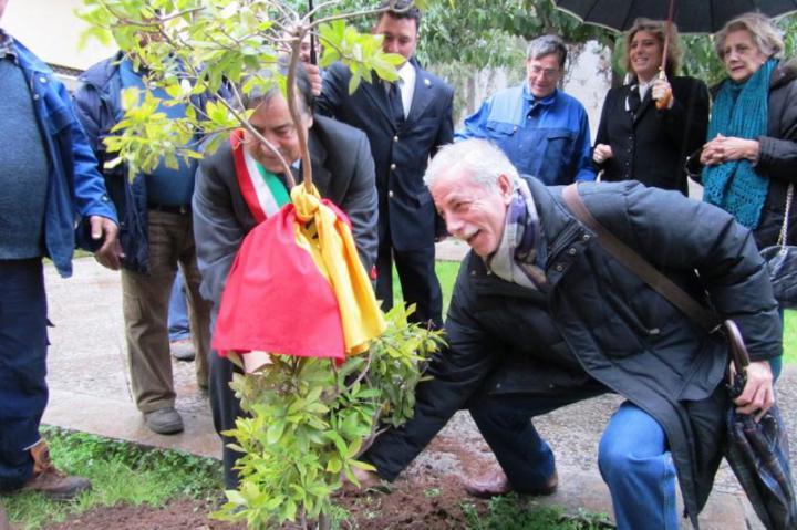La piantumazione dell'albero con il sindaco Orlando