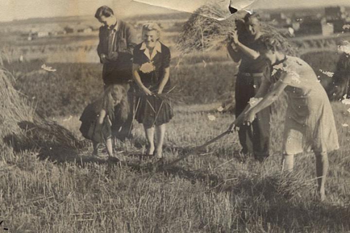 La mamma e la piccola al lavoro nei campi