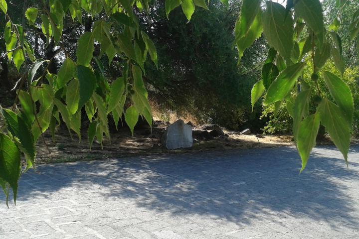 Gariwo la foresta dei giusti giardino di catania for Torrisi arredi giardino catania