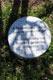 Il cippo sotto l'albero dedicato a Pierantonio Costa