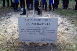 Gariwo la foresta dei giusti bisceglie onora i giusti con la dedica di un albero a gino - Il giardino dei giusti ...