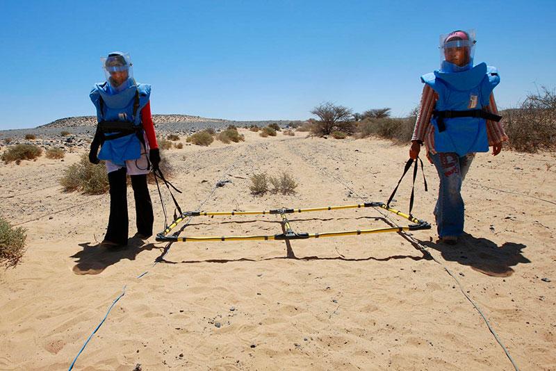 Ricerca visiva di mine antiuomo a Mehaires, nel Sahara occidentale.