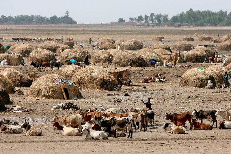 Pastori su una pianura arida nel Mali centrale.