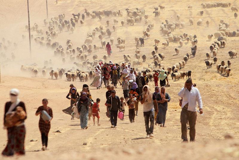 Yazidi fleeing Sinjar in 2014.
