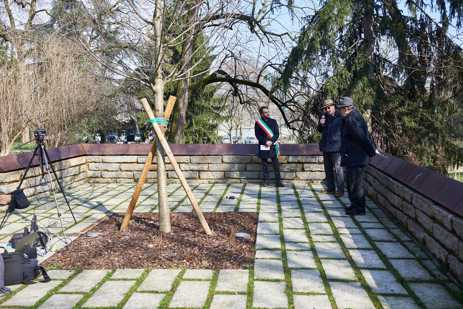 Albero della Memoria presso il Giardino dei Giusti di Milano